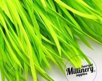 Green Goose Biot Feather Fringe, 5 Inch Piece (30 or More Feathers) for Millinery and Craft