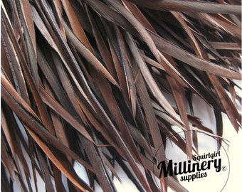 Chocolate Brown Goose Biot Feather Fringe, 5 Inch Piece (30 or More Feathers) for Millinery and Craft