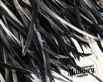 Black Goose Biot Feather Fringe, 5 Inch Piece (30 or More Feathers) for Millinery and Craft