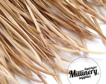 Latte Goose Biot Feather Fringe, 5 Inch Piece (30 or More Feathers) for Millinery and Craft