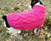 Hand Knit Turtleneck Cabled Dog Sweater