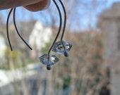Herkimer Diamond Hook Earrings in Silver