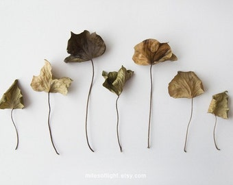 Autumn I. 8x10
