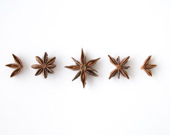 Star Anise in a row. 8x10. Fine Art Photographic Print. Minimalist. Natural Home Decor. Indoor garden botanical. Kitchen wall art.