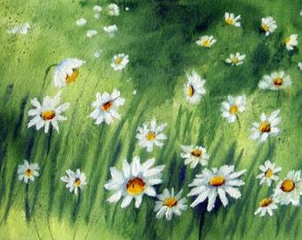 Daisies - Original Floral Watercolor Painting