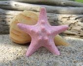 Starfish Pink Sparkle Hair Clip-OCEAN SPARKLE-Mermaid, Mermaid Costumes, Halloween, Beach Weddings, Mermaid Birthday Party, Under the Sea