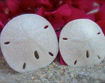 Sand Dollar Bobby Pin,Beach Weddings,Beach Bride,Beach Flower Girl,Destination Wedding,Beach Hair,Sand Dollars,Mermaids,Mermaid Costume,