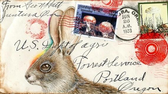 Bunny Shroom Postcard