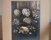 Memorial Photograph - Vintage Photograph