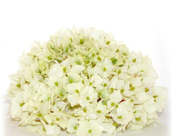 1 Large  Cream and Light Green Hydrangea Bunch - Small Petals - Artificial Flower Heads
