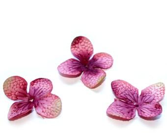 20 Hydrangea Blossoms in Mauve Pink - PRE-ORDER