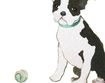 Illustrated Canine Note Cards - Boston Terrier - Set of 5 Blank Cards