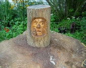 man hiding in tree