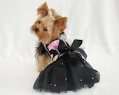 Dog Dress Harness - New Years Celebrate