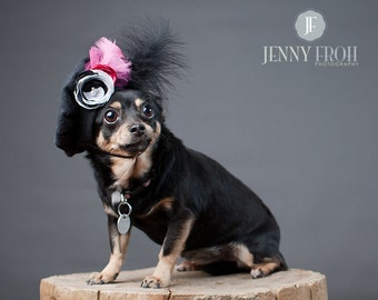 Funky Feather Dog Beret Hat