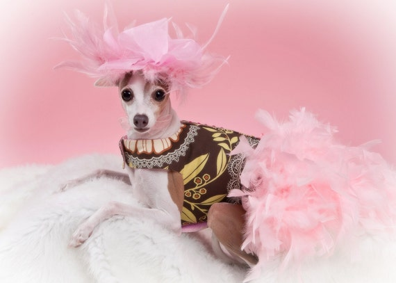 Dog Dress Feather Harness - Retro Pink
