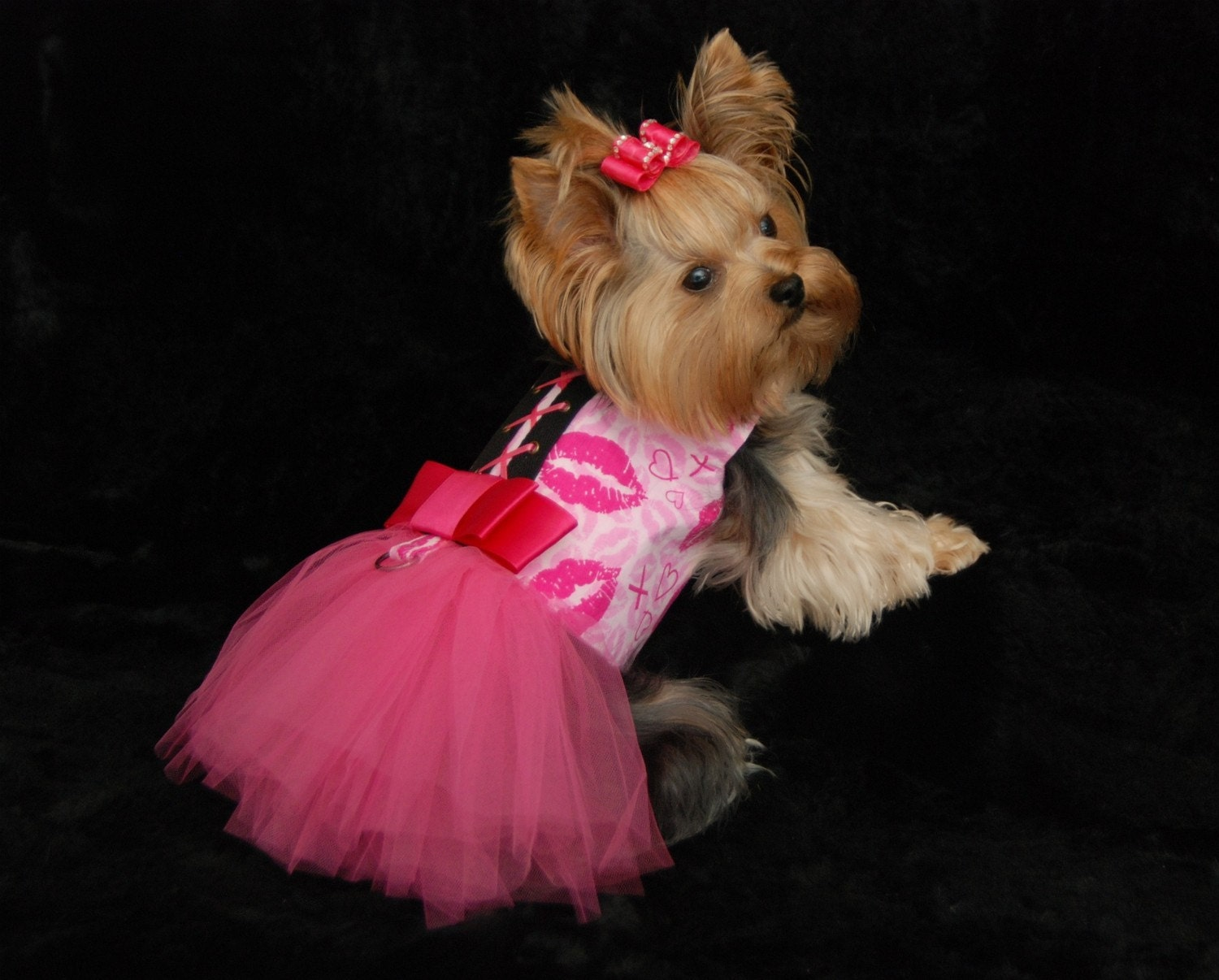 Pink Kisses Tutu Harness Dog Dress Limited Edition