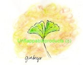 Gingko Greeting Card 5 x 7 Suitable For Framing