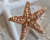 Beaded Brooch Sandy Starfish