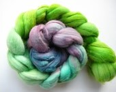Hand painted Merino roving  Friends don't let friends choose wisely  2.5 oz