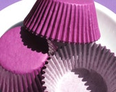 Purple Cupcake Liners Baking Cups (200 COUNT PACK)