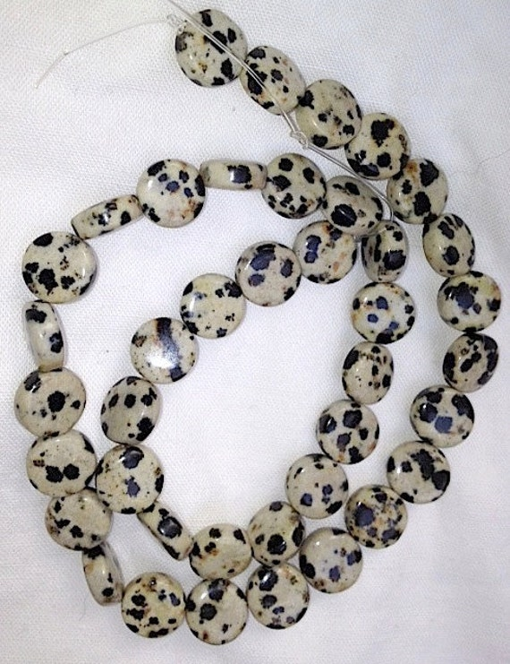Reserved. DESTASH.  Dalmatian Jasper and Fossil Coral strands