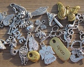 Metal Charm Variety, Set of 30 Assorted