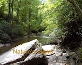 North Carolina River Rocks Stream ACEO Photo Print Mountains Brown Green 3 for the price of 2