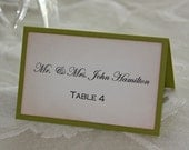 50 Rustic Green Wedding Placecards