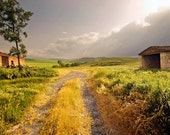 "Fine Art Photograph ""Sun Break"" Tuscany, Italy"