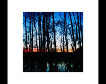 Swamp Sunset 8X8 Custom Print