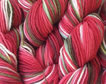 Strawberry Fields DK Sport Weight Handpainted Merino Wool Yarn Red White Green