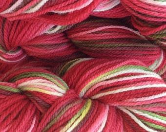 Hand Painted Merino Wool Worsted Weight Yarn in Strawberry Fields Red White Green