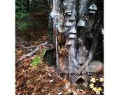 Deep Woods Secret Base...16x20 matted fine art photograph collage / giclee print