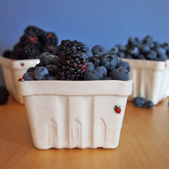 berry basket with ladybugs