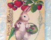 Spring Bunny Tags - Set of 4 - Vintage Bunny - Gift Tags - Easter Bunny - Strawberry Bunny - Garden Bunny - Cottage Chic - Thank Yous