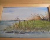 Rustic Shoreline