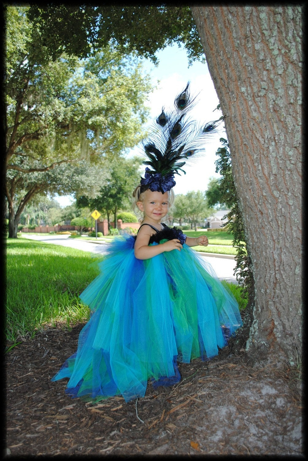 Infant Toddler Peacock Tutu Dress And Feather Headband