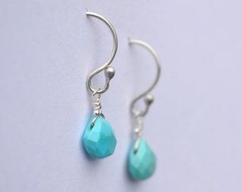 Sleeping Beauty Mine Turquoise Earrings