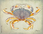 Dungenous Crab (8x10)