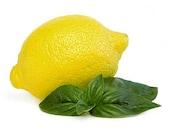 8 oz. Cool Citrus Basil Soy Candle