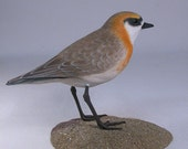 Mongolian Plover Hand Carved and Hand Painted Water bird