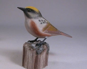 Chestnut-sided Warbler Wood Carving