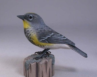 Audubon's Warbler Wood Carving Bird