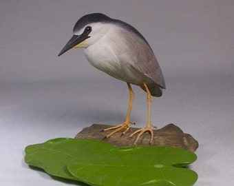 5-5/8 inches Night Heron Hand Carved Wooden Bird