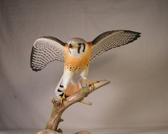 Open-winged American Kestrel male Hand Carved Wooden Bird Carving