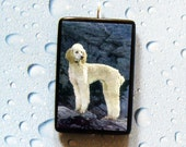 White Poodle dog in the wilderness Pendant or Pin
