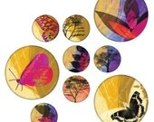 Rainforest 1 inch Circles, Digital Collage Sheet, Download and Print Jpeg Images