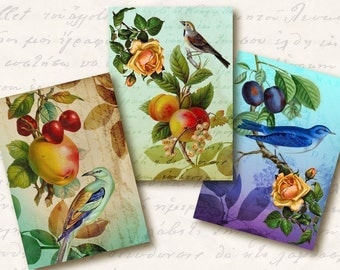 Opulence Atc Aceo Tags, Digital Collage Sheet, Download and Print Jpeg Images