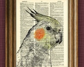 COCKATIEL Bird Art Print beautifully upcycled vintage dictionary page book art print altered